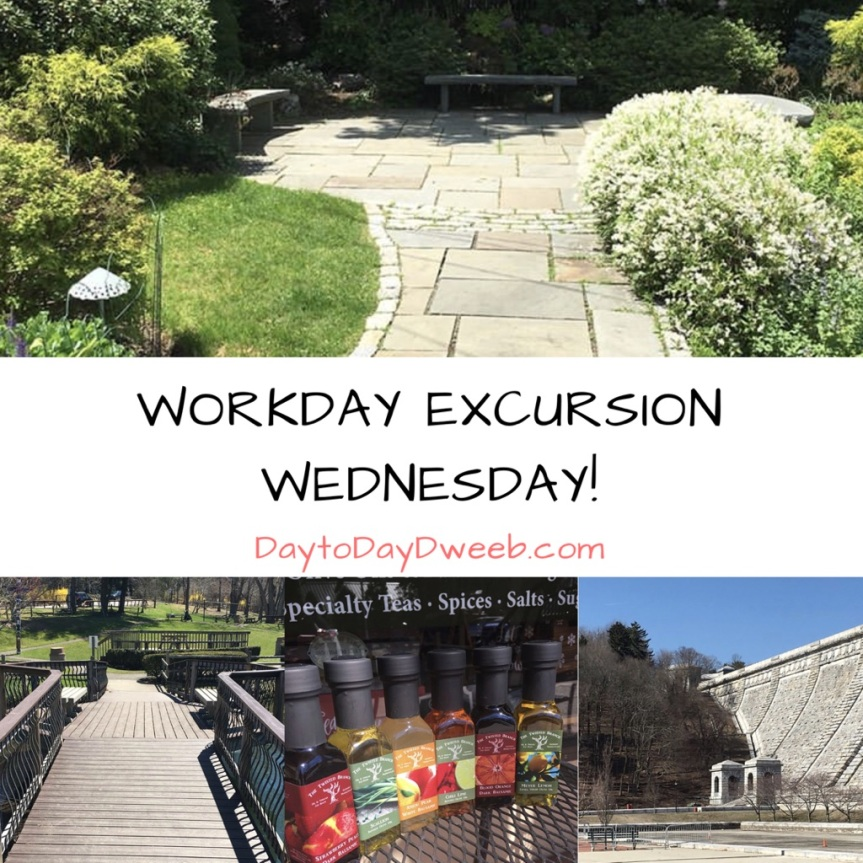 Workday Excursion Wednesday!